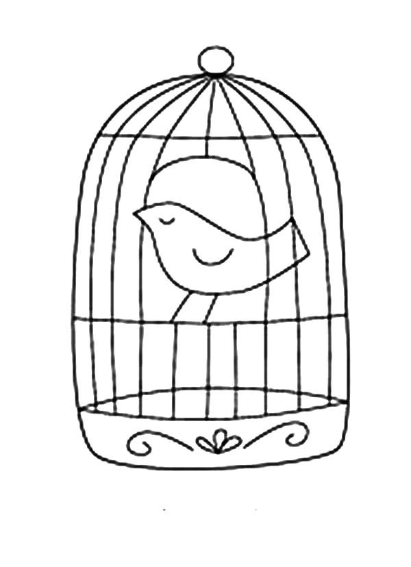 Bird Cage, : How to Draw Bird Cage Coloring Pages