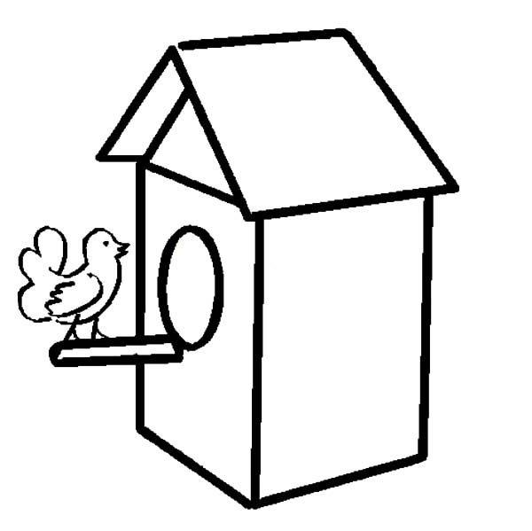 Bird House, : How to Draw Bird House Coloring Pages