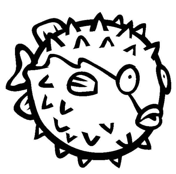 Blowfish, : How to Draw Blowfish Coloring Pages