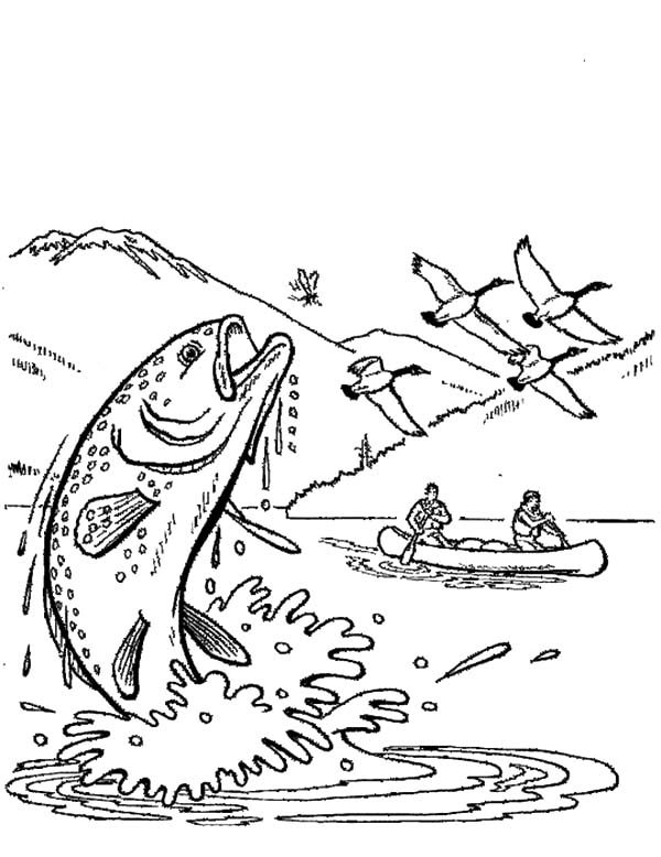 Apache Trout, : Hunting Apache Trout Coloring Pages