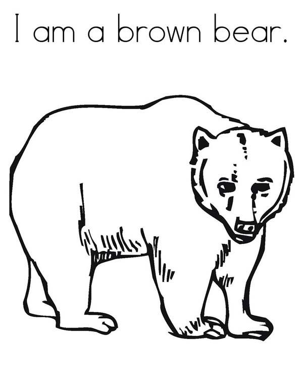 Brown Bear, : I am a Brown Bear Coloring Pages