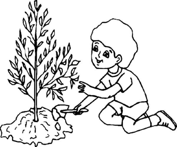 Arbor Day, : Kids Caring Tree on Arbor Day Coloring Pages