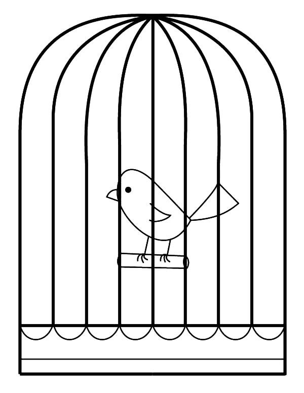 Bird Cage, : Little Bird in Bird Cage Coloring Pages