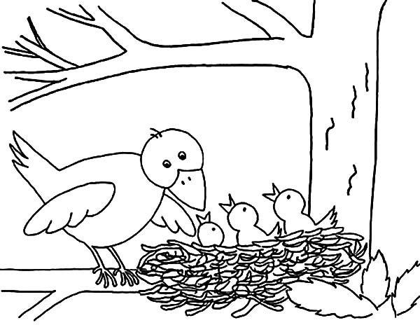 mother bird put her babies in bird nest coloring pages