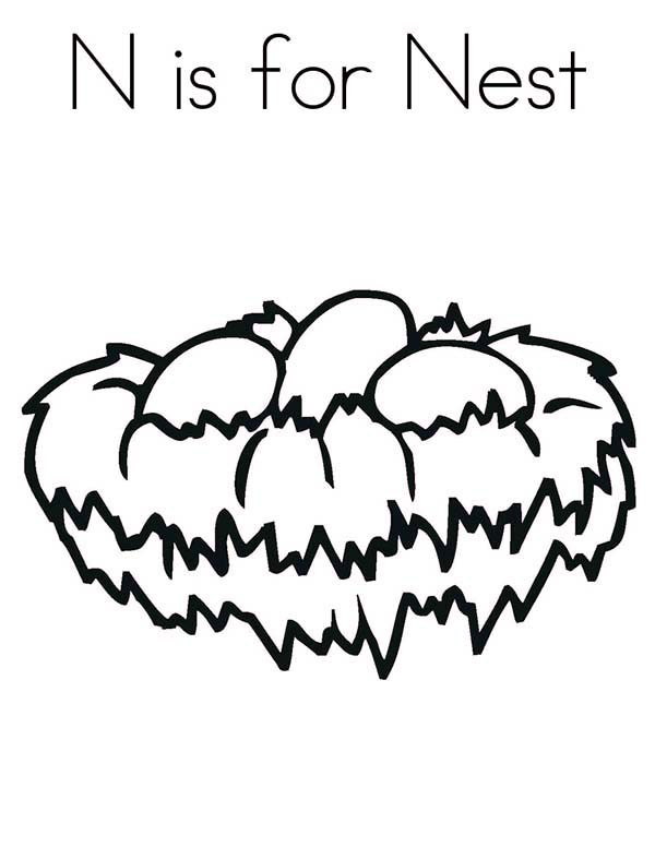 N is for bird nest coloring pages best place to color for Bird nest coloring page
