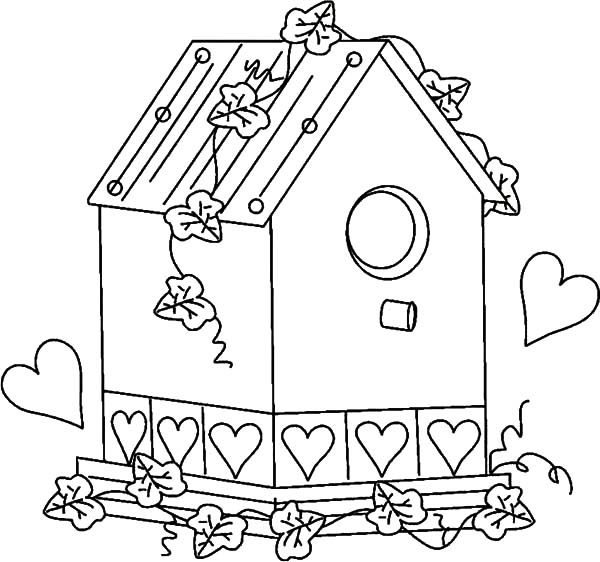 Bird House, : Picture of Bird House Coloring Pages