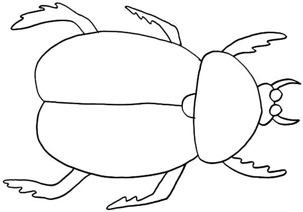 Beetle, : Preschooler Kids Learn about Beetle Coloring Pages
