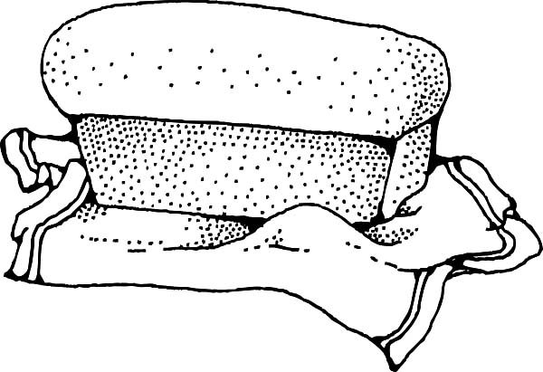 Bread, : Roasted Bread Coloring Pages