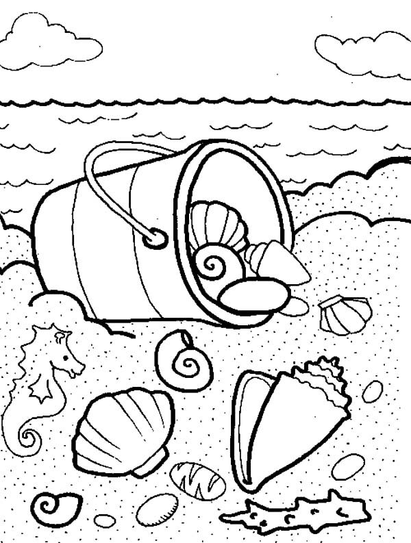 Bucket, : Sea Shells in the Bucket Coloring Pages
