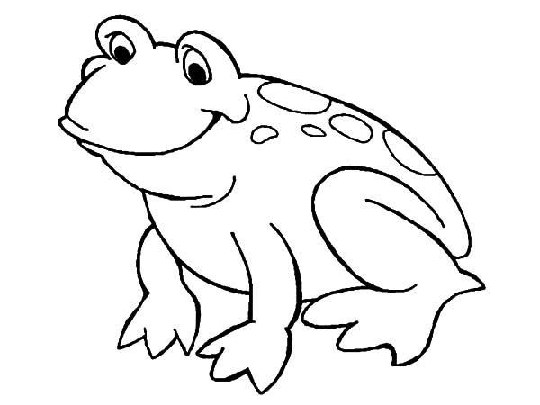 Bullfrog, : Smiling Bullfrog Coloring Pages
