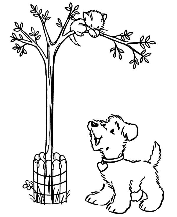 Arbor Day, : Snowy Saw His Friend Up on Treee on Arbor Day Coloring Pages