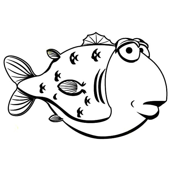 Blowfish, : Tasty Sea Blowfish Coloring Pages