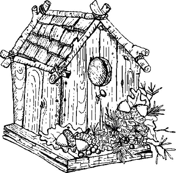 Bird House, : Traditional Bird House Coloring Pages
