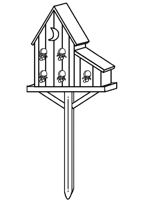 Bird House, : Unique Bird House Coloring Pages