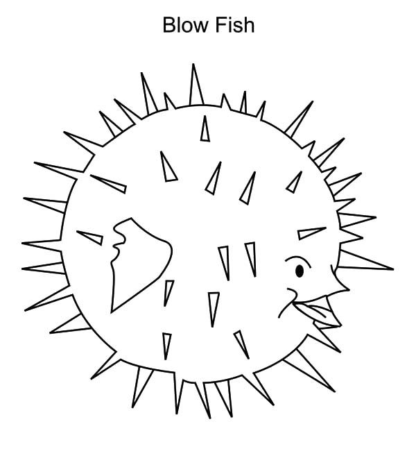 water animal blowfish coloring pages best place to color. Black Bedroom Furniture Sets. Home Design Ideas