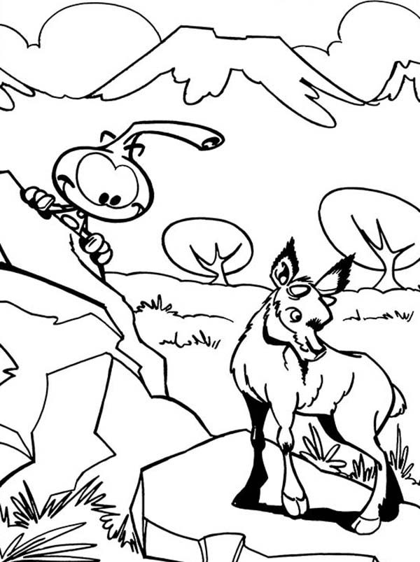 Snorkels, : Allstar Peeking Mountain Goat Behind a Rock in Snorkels Coloring Pages