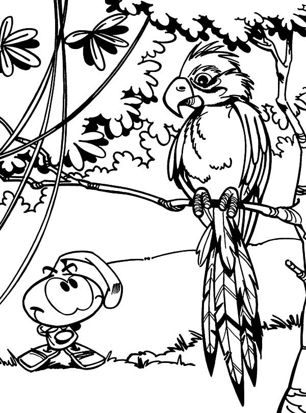 Snorkels, : Allstar Watching Bird in the Jungle in Snorkels Coloring Pages