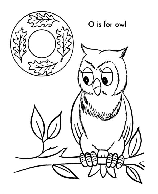Letter O, : Alphabet Letter O for Owl Coloring Page