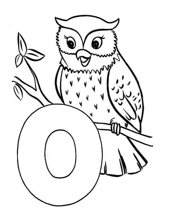 Letter O, : Animal Come from Letter O os Owl Coloring Page
