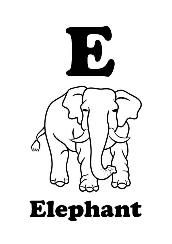 Letter E, : Learning Letter E Coloring Page for Kindergarten Kids