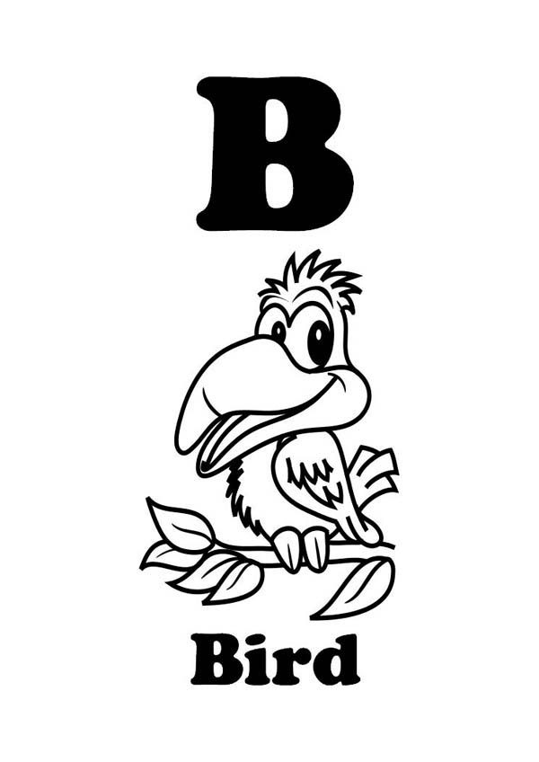 Letter B, : Letter B is for Bird Coloring Page for Preschool Kids