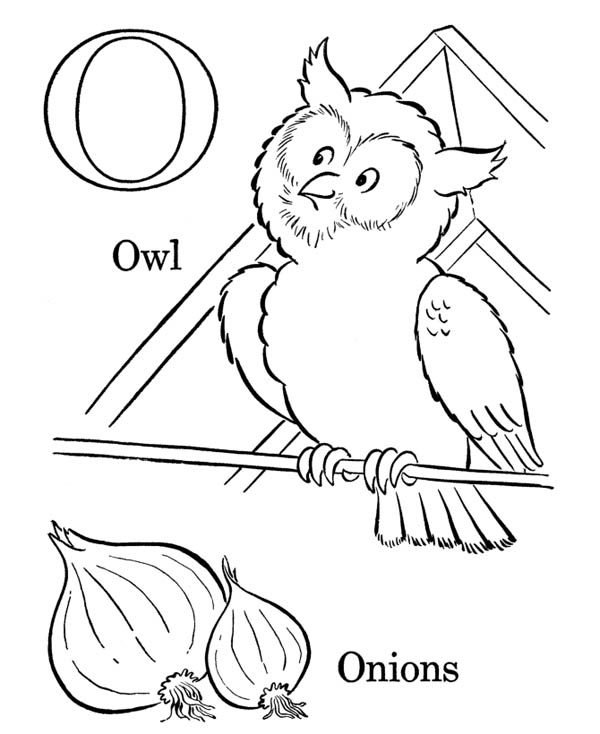 Letter O, : Letter O Words Coloring Page