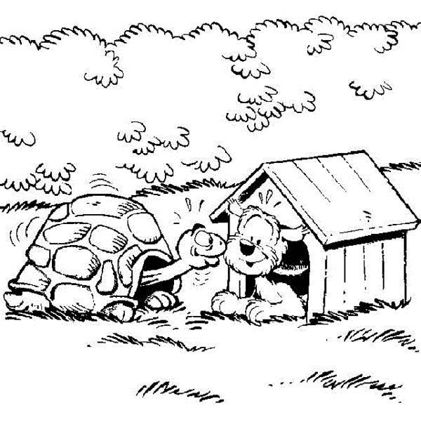 Samson and Gert, : Samson and Gert Meet a Tortoise Coloring Pages