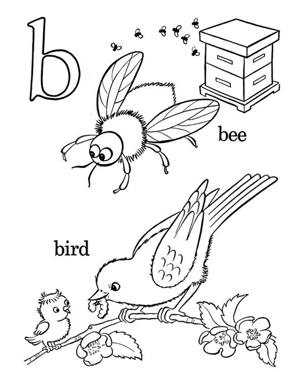Letter B, : Smart Learning Letter B Coloring Page