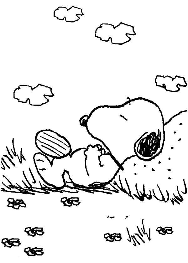 Snoopy, : Snoopy Lazing on Sunny Day Coloring Pages
