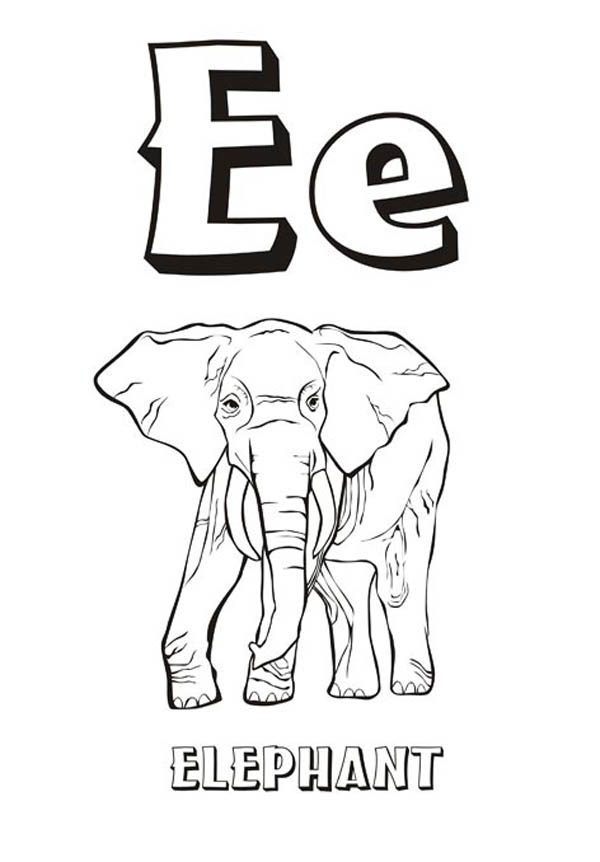 Letter E, : Upper and Lower Case Letter E for Elephant Coloring Page