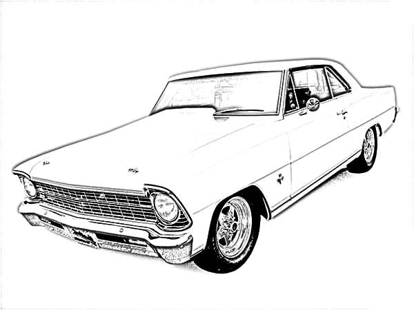 Camaro Cars, : Vintage Camaro Cars Coloring Pages