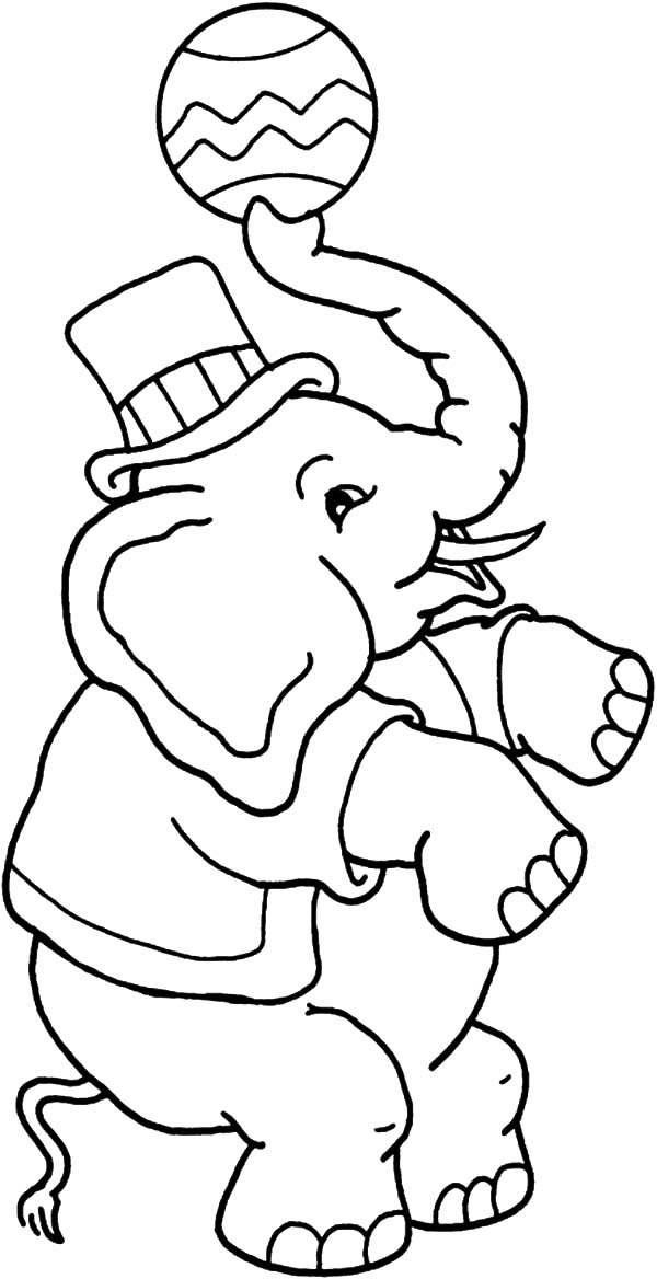 Circus Elephant, : Awesome Circus Elephant Coloring Pages