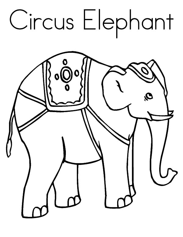 Circus Elephant Outline Coloring Pages Circus Elephant Circus Elephant Coloring Page