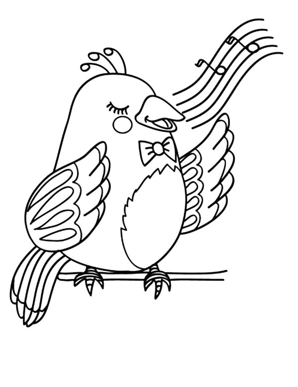 Canary Bird Beautiful Voice Coloring Pages