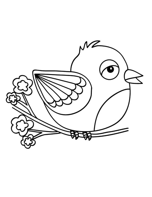 canary bird coloring pages - photo#10