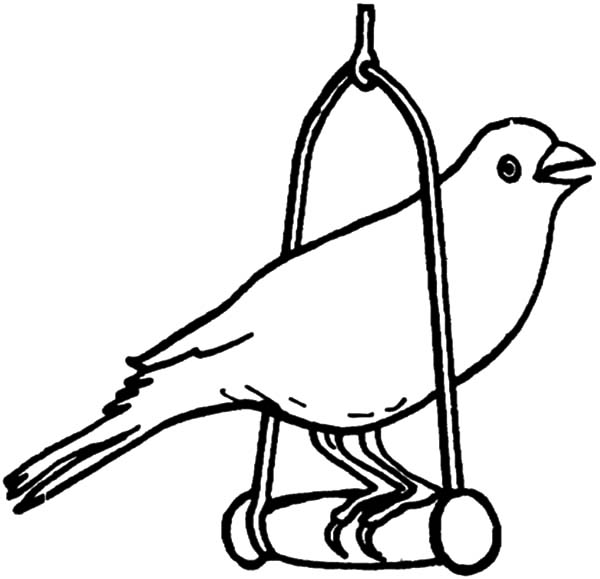 Canary Bird Singing on Tree Coloring Pages | Best Place to Color
