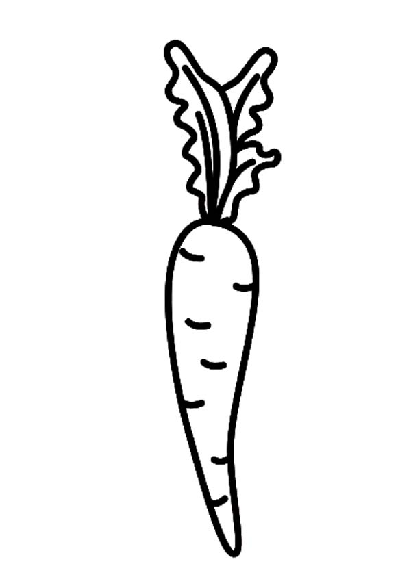 Carrot, : Carrot Full of Vitamin A Coloring Pages