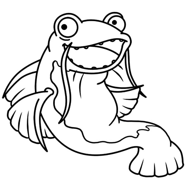 Catfish, : Catfish Big Grin Coloring Pages