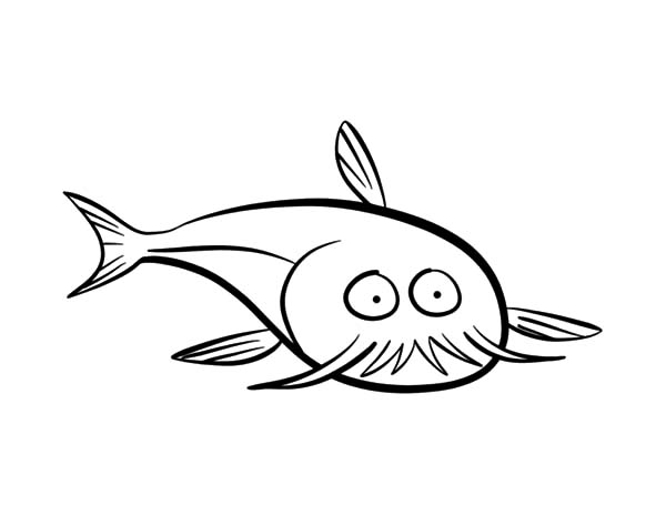 Catfish, : Catfish Does Not What He Saw Coloring Pages
