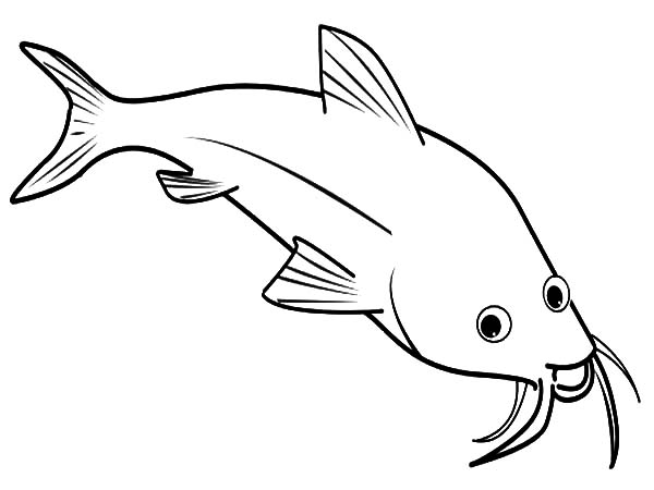 Catfish, : Catfish is Laughing Coloring Pages