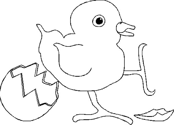 chick hatching stretch her foot coloring pages