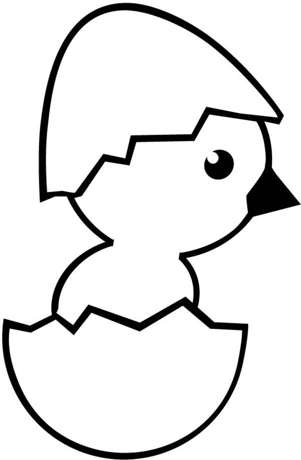 Chick Hatching, : Chick Hatching Wearing Eggshell Hat Coloring Pages
