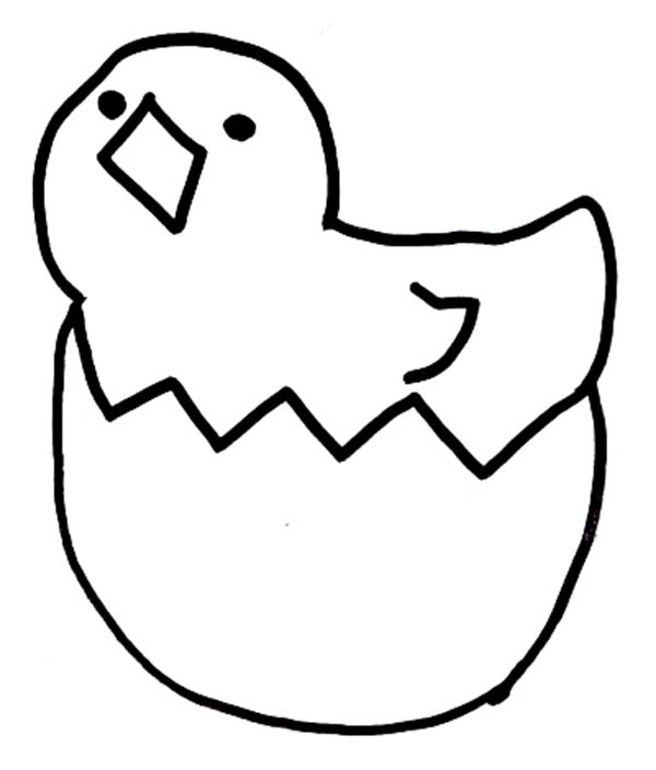 Chick Hatching, : Chick Singing After Hatching Coloring Pages