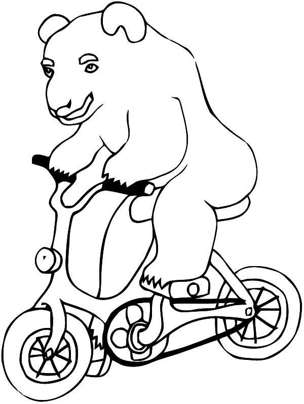 Circus Bear, : Circus Bear Riding Bicycle Coloring Pages