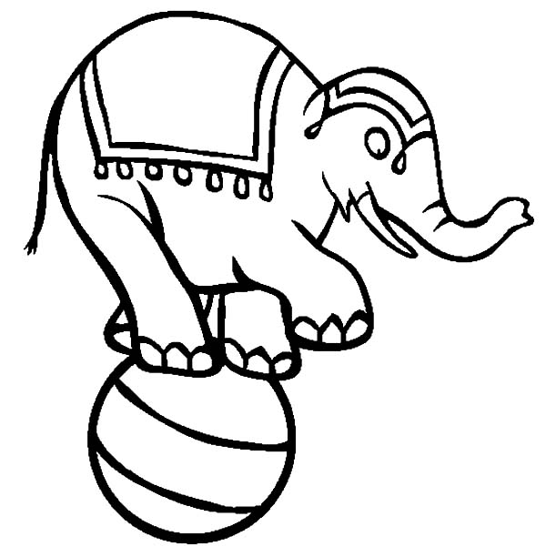 Circus Elephant, : Circus Elephant Coloring Pages for Kids
