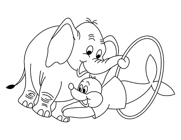 Circus Elephant, : Circus Elephant Helping Seal Show Coloring Pages