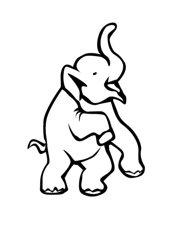 Circus Elephant, : Circus Elephant Lift His Two Feet Coloring Pages