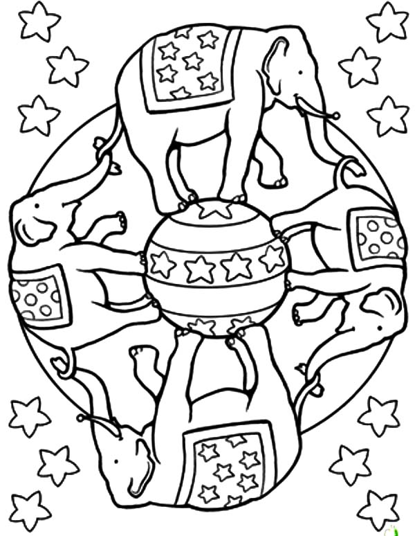 Elephant Coloring Pages Circus Elephant Mandala Coloring