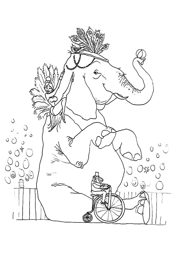 Circus Elephant, : Circus Elephant and Friends Show Coloring Pages