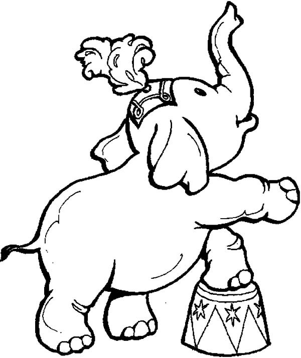 Carnival, : Circus and Carnival Animal Show Coloring Pages